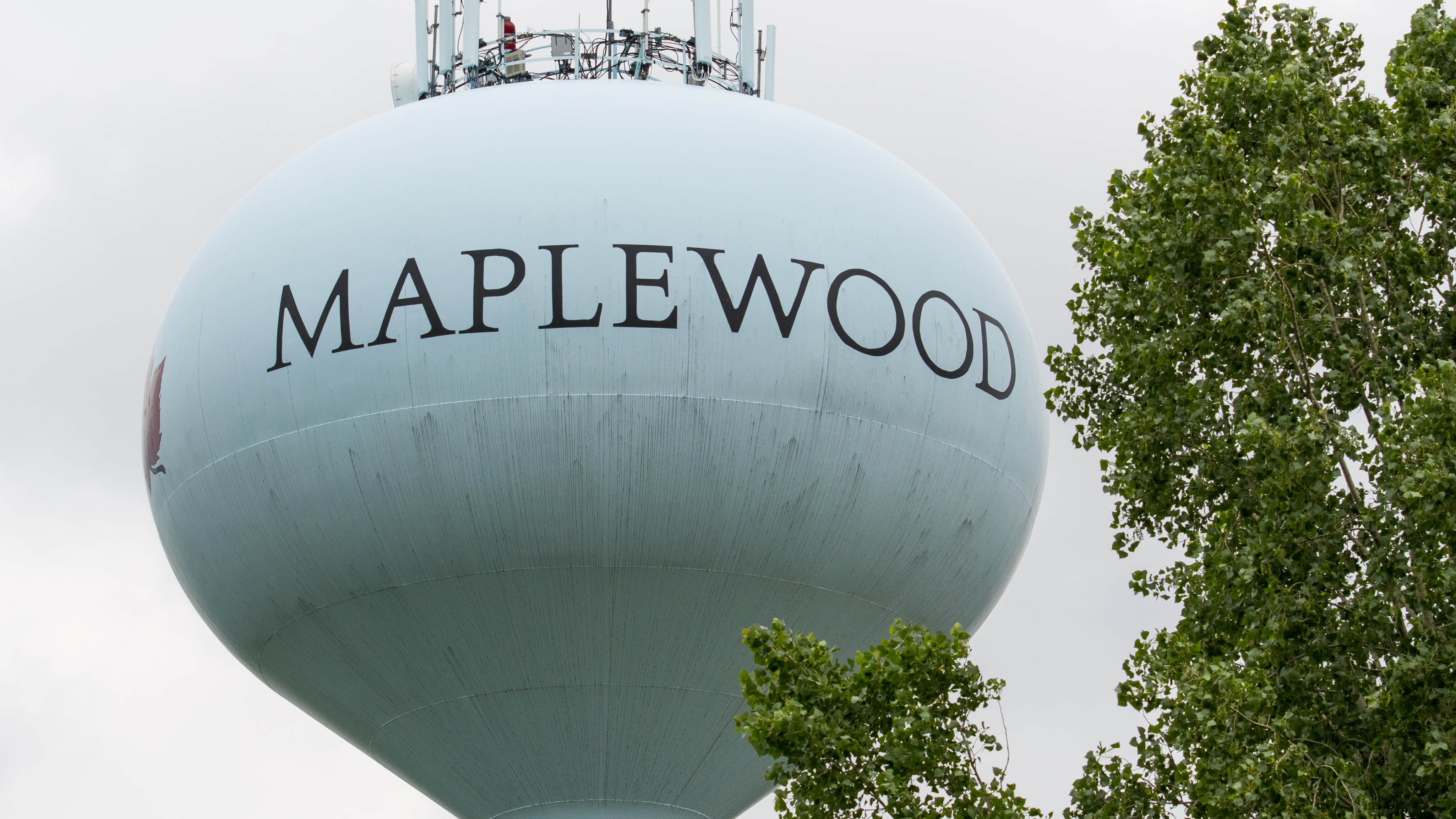 maplewood salt